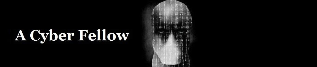 A Cyber Fellow