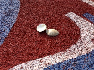 track with clam shells